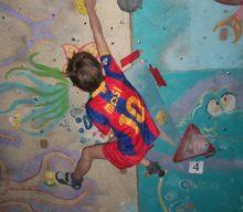 Открытый Чемпионат Центра Внешкольной  Работы скалолазного Клуба «IronRock» по боулдерингу